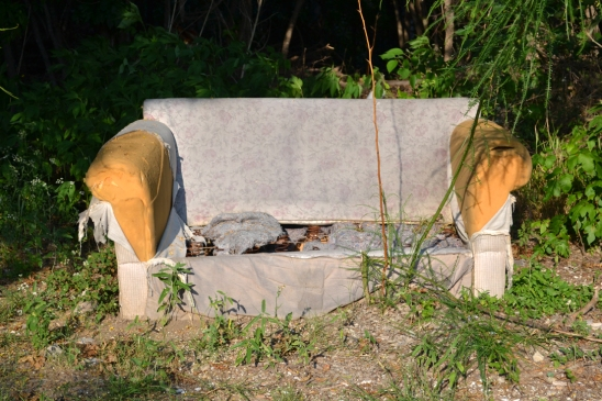 An abandoned sofa adjacent to an overgrown creek area.