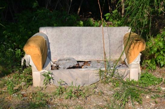 An abandoned sofa adjacent to an overgrown creek area.